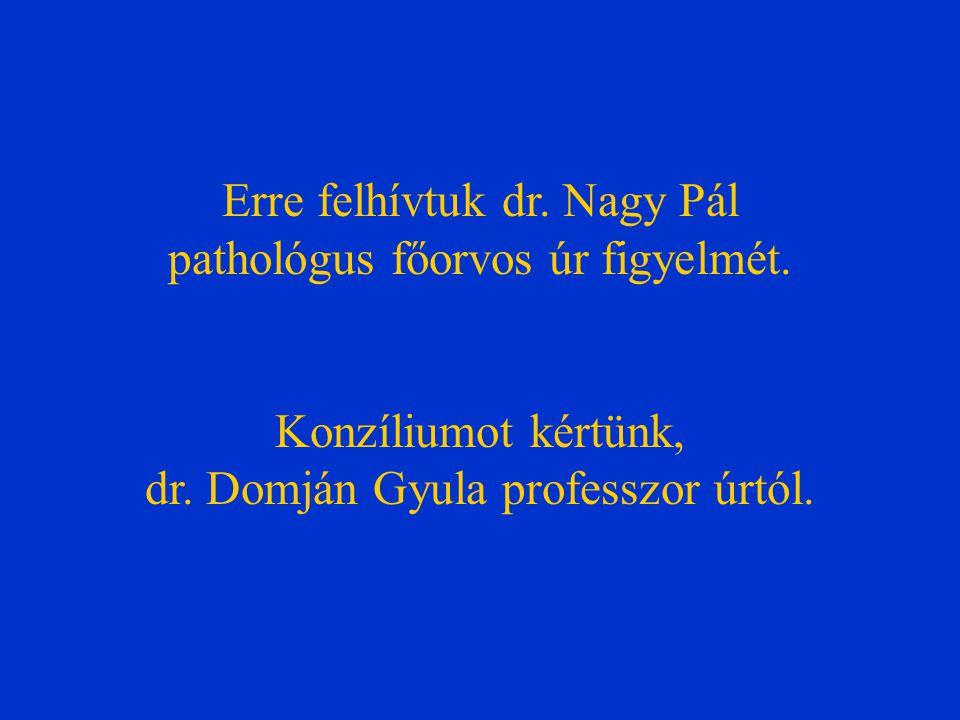 Erre felhívtuk dr. Nagy Pál pathológus főorvos úr figyelmét. Konzíliumot kértünk, dr. Domján Gyula professzor úrtól.