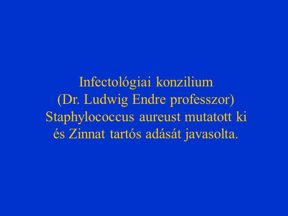 Infectológiai konzilium (Dr. Ludwig Endre professzor) Staphylococcus aureust mutatott ki és Zinnat tartós adását javasolta.