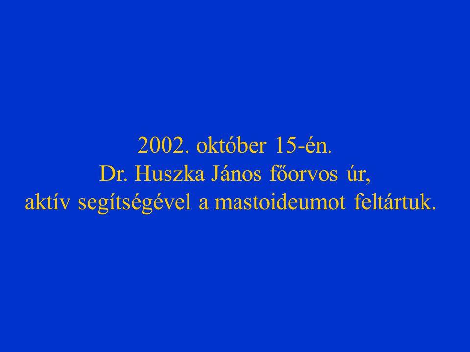 2002. október 15-én. Dr. Huszka János főorvos úr, aktív segítségével a mastoideumot feltártuk.