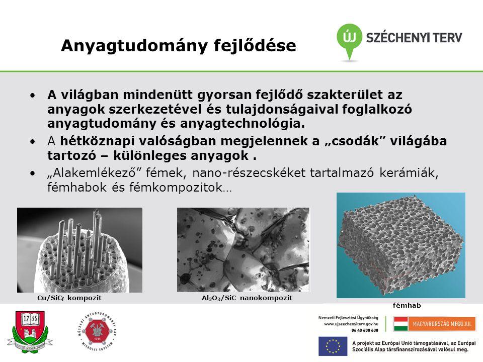 Nanotechnológia jelentősége A nanotechnológia tudományát a gyors fejlődés és a mérnöki kíváncsiság keltette életre. A mai mérnöktársadalom, a fémekkel