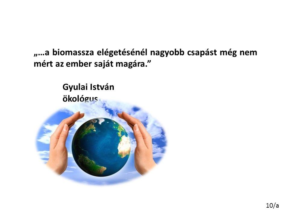 """10/a """"…a biomassza elégetésénél nagyobb csapást még nem mért az ember saját magára."""" Gyulai István ökológus"""