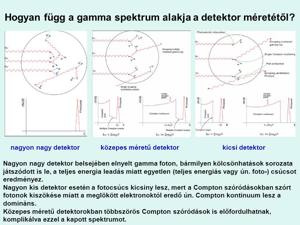 Hogyan függ a gamma spektrum alakja a detektor méretétől? nagyon nagy detektor közepes méretű detektor kicsi detektor Nagyon nagy detektor belsejében