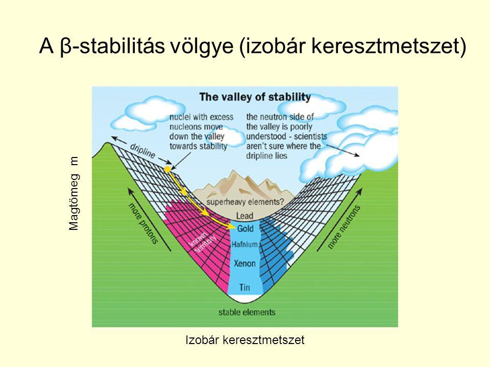 A β-stabilitás völgye (izobár keresztmetszet) Magtömeg m Izobár keresztmetszet