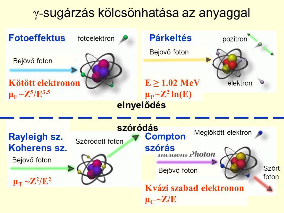 γ- sugárzás kölcsönhatása az anyaggal Bejövő foton fotoelektron Bejövő foton elektron pozitron Szórt foton Meglökött elektron Szóródott foton Fotoeffe