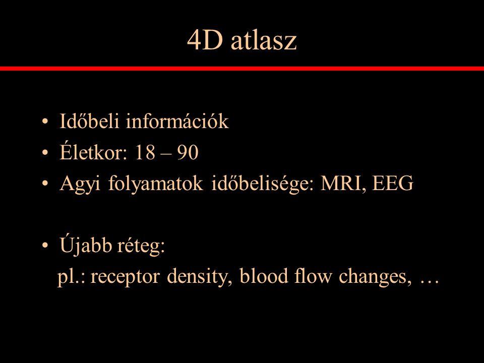 4D atlasz Időbeli információk Életkor: 18 – 90 Agyi folyamatok időbelisége: MRI, EEG Újabb réteg: pl.: receptor density, blood flow changes, …