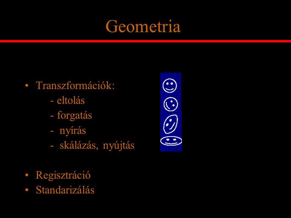 Geometria Transzformációk: - eltolás - forgatás - nyírás - skálázás, nyújtás Regisztráció Standarizálás