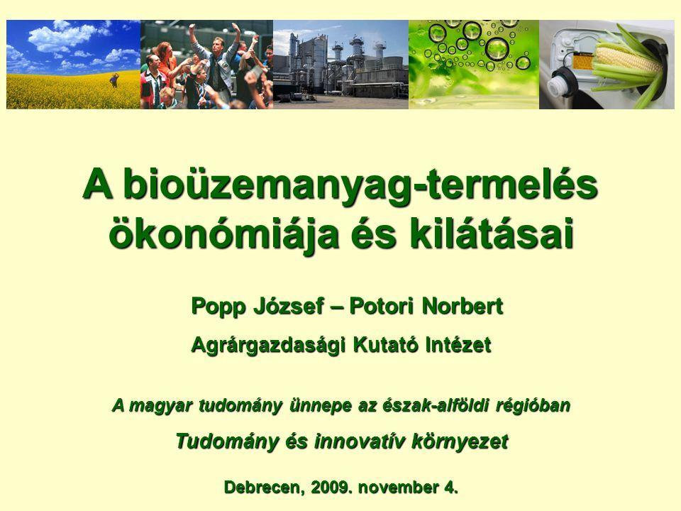 A bioüzemanyag-termelés ökonómiája és kilátásai Popp József – Potori Norbert Popp József – Potori Norbert Agrárgazdasági Kutató Intézet A magyar tudom