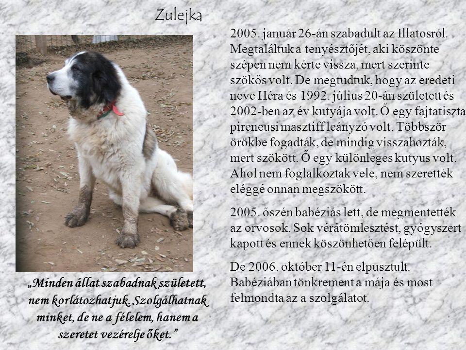 Zulejka 2005.január 26-án szabadult az Illatosról.