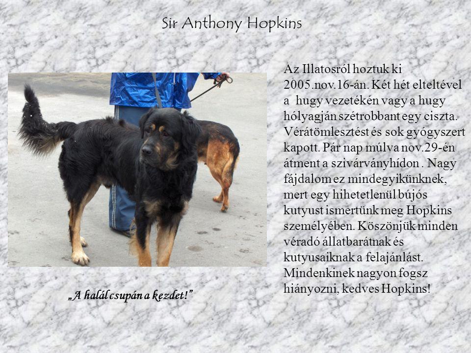 Sir Anthony Hopkins Az Illatosról hoztuk ki 2005.nov.16-án. Két hét elteltével a hugy vezetékén vagy a hugy hólyagján szétrobbant egy ciszta. Vérátöml