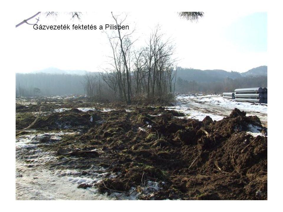 Gázvezeték fektetés a Pilisben