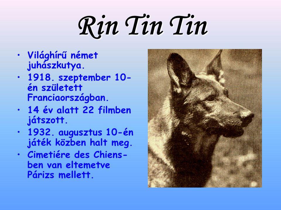 Rin Tin Tin Világhírű német juhászkutya.1918. szeptember 10- én született Franciaországban.