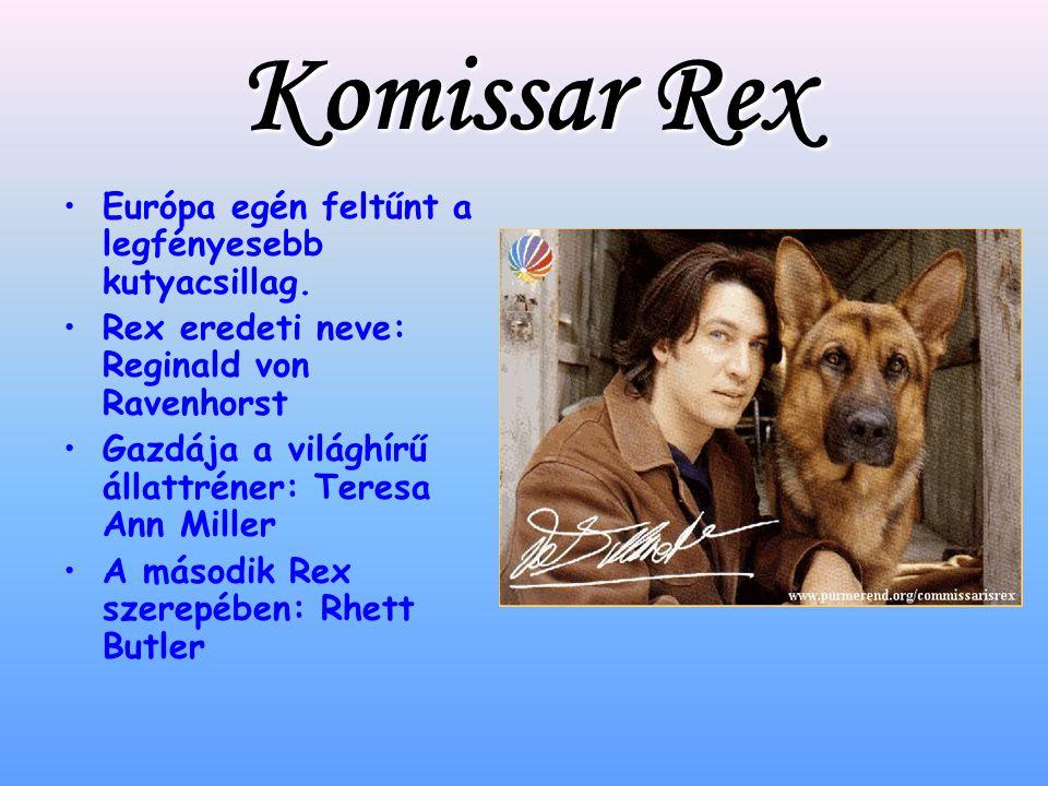 Komissar Rex Európa egén feltűnt a legfényesebb kutyacsillag.