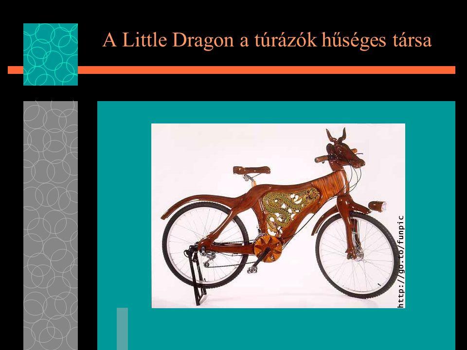 A Little Dragon a túrázók hűséges társa