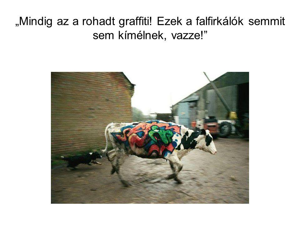 """""""Mindig az a rohadt graffiti! Ezek a falfirkálók semmit sem kímélnek, vazze!"""""""