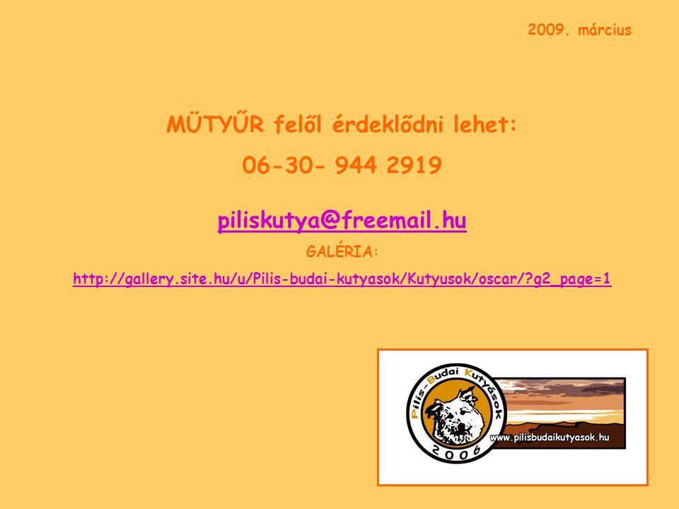 MÜTYŰR felől érdeklődni lehet: 06-30- 944 2919 piliskutya@freemail.hu piliskutya@freemail.hu GALÉRIA: http://gallery.site.hu/u/Pilis-budai-kutyasok/Kutyusok/oscar/ g2_page=1 2009.