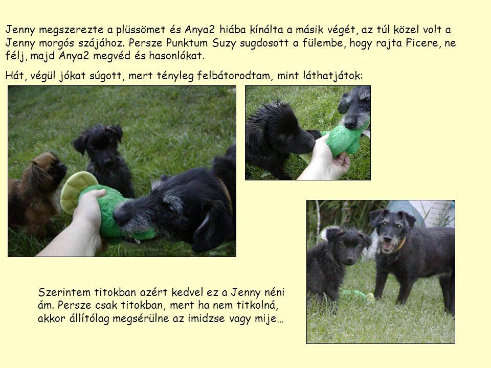 Jenny megszerezte a plüssömet és Anya2 hiába kínálta a másik végét, az túl közel volt a Jenny morgós szájához.