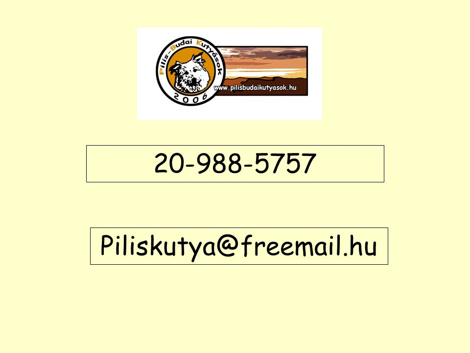 20-988-5757 Piliskutya@freemail.hu