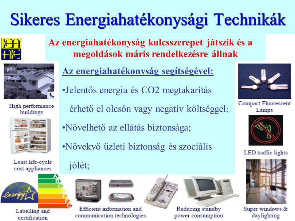 Sikeres Energiahatékonysági Technikák Az energiahatékonyság kulcsszerepet játszik és a megoldások máris rendelkezésre állnak Az energiahatékonyság segítségével: Jelentős energia és CO2 megtakarítás érhető el olcsón vagy negatív költséggel ; Növelhető az ellátás biztonsága; Növekvő üzleti biztonság és szociális jólét;