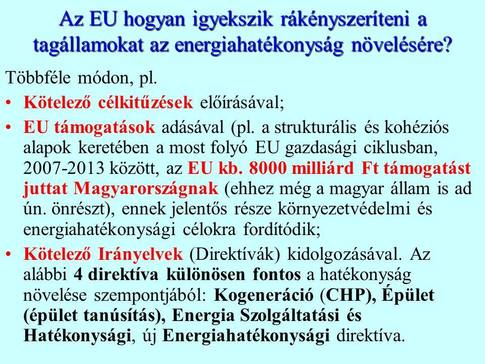 Az EU hogyan igyekszik rákényszeríteni a tagállamokat az energiahatékonyság növelésére? Többféle módon, pl. Kötelező célkitűzések előírásával; EU támo