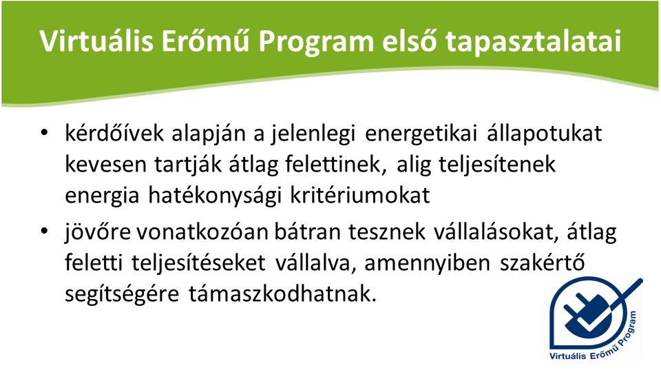 Legjellemzőbb vállalások témakörönként: – vállalati energetikai stratégia kialakítása (I.) – energiafogyasztás költséghelyi mérése (II.) – energiahatékonysági akciótervek rendszeres értékelése (III.) – az erőforrások energiahatékonyságának növelése (IV.) – energiahatékonysági fejlesztések dokumentálása (V.)