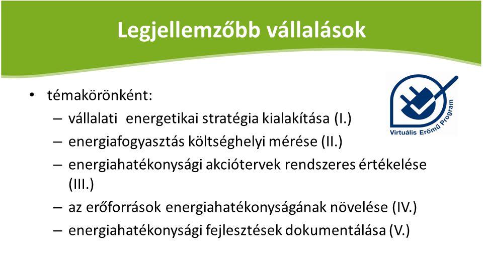 Legjellemzőbb vállalások témakörönként: – vállalati energetikai stratégia kialakítása (I.) – energiafogyasztás költséghelyi mérése (II.) – energiahaté