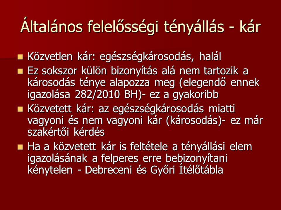 Függelék VIII.84/2007 BH.