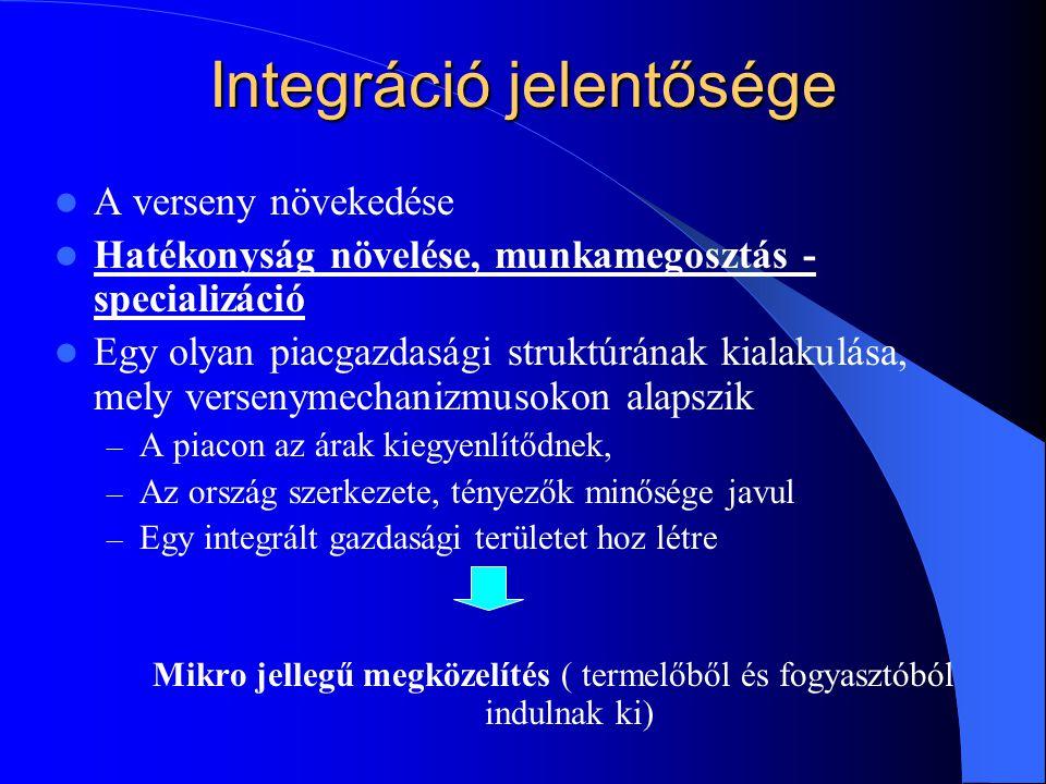 Integráció jelentősége A verseny növekedése Hatékonyság növelése, munkamegosztás - specializáció Egy olyan piacgazdasági struktúrának kialakulása, mel