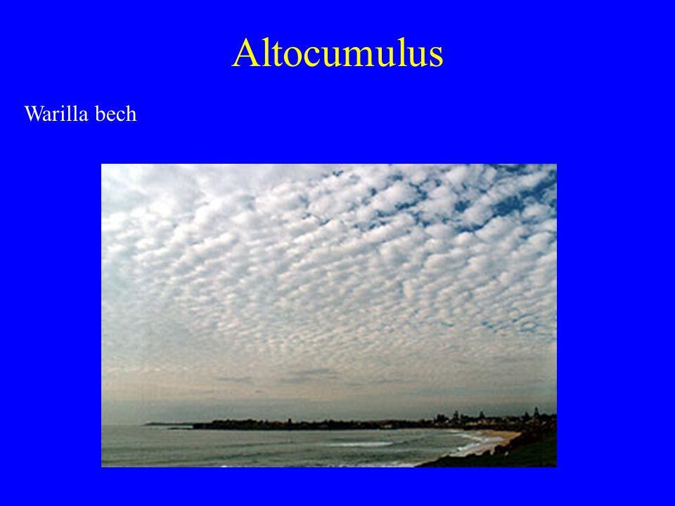 Altocumulus Warilla bech