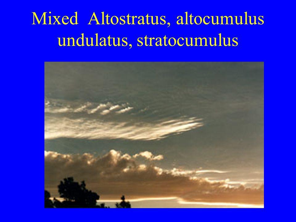 Mixed Altostratus, altocumulus undulatus, stratocumulus