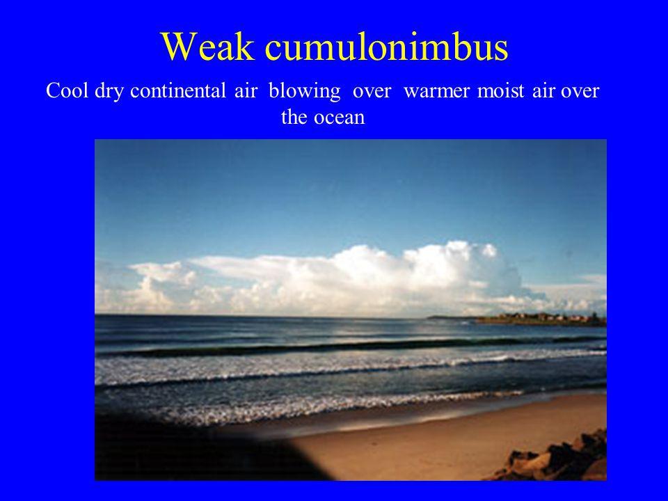 Weak cumulonimbus Cool dry continental air blowing over warmer moist air over the ocean