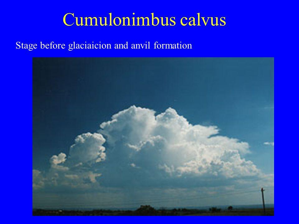 Cumulonimbus calvus Stage before glaciaicion and anvil formation