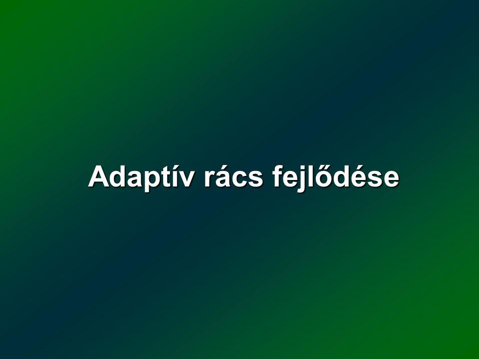 Adaptív rács fejlődése