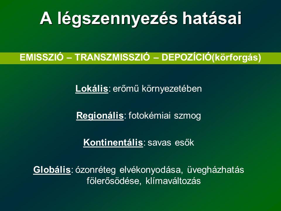 Vizsgálati szempontok  Kibocsátási körülmények - Nem elég a koncentrációt ismerni, kell tudni a forrásokról is - vonal (közlekedés) - pont (ipar, szolgáltatók) - terület (lakossági fűtés, autók indítása) =emissziós leltár készítése - kéménymagasság - a felszín érdessége - háttér-koncentrációk (magasabb skálán kapott értékmező)