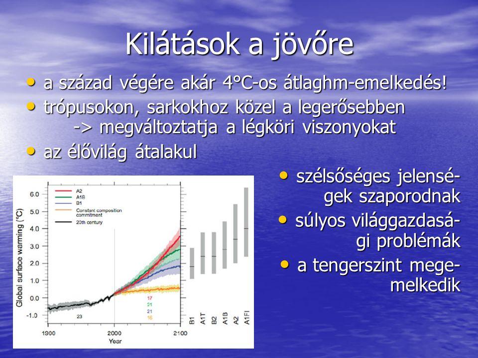 Kilátások a jövőre a század végére akár 4°C-os átlaghm-emelkedés.