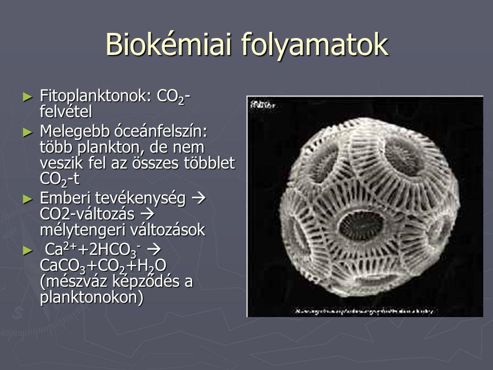 Biokémiai folyamatok ► Fitoplanktonok: CO 2 - felvétel ► Melegebb óceánfelszín: több plankton, de nem veszik fel az összes többlet CO 2 -t ► Emberi tevékenység  CO2-változás  mélytengeri változások ► Ca 2+ +2HCO 3 -  CaCO 3 +CO 2 +H 2 O (mészváz képződés a planktonokon)