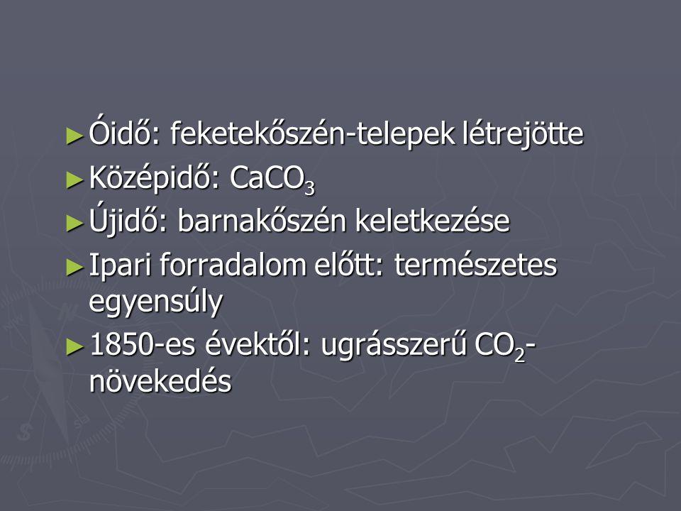 ► Óidő: feketekőszén-telepek létrejötte ► Középidő: CaCO 3 ► Újidő: barnakőszén keletkezése ► Ipari forradalom előtt: természetes egyensúly ► 1850-es évektől: ugrásszerű CO 2 - növekedés