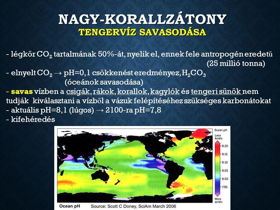 NAGY-KORALLZÁTONY TENGERVÍZ SAVASODÁSA - légkör CO 2 tartalmának 50%-át, nyelik el, ennek fele antropogén eredet ű (25 millió tonna) - elnyelt CO 2 →