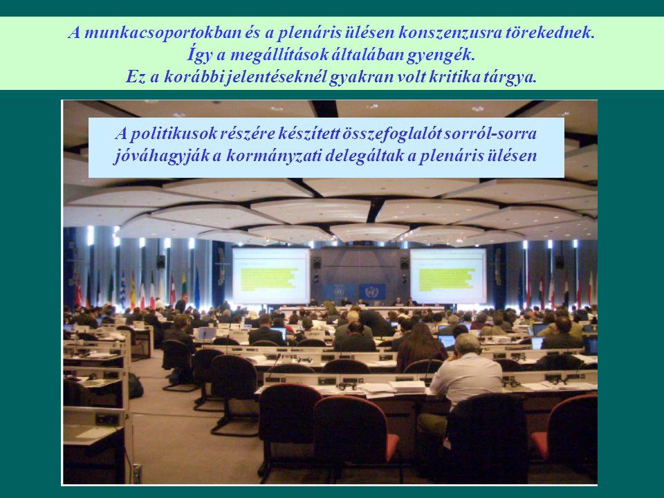 A politikusok részére készített összefoglalót sorról-sorra jóváhagyják a kormányzati delegáltak a plenáris ülésen A munkacsoportokban és a plenáris ül