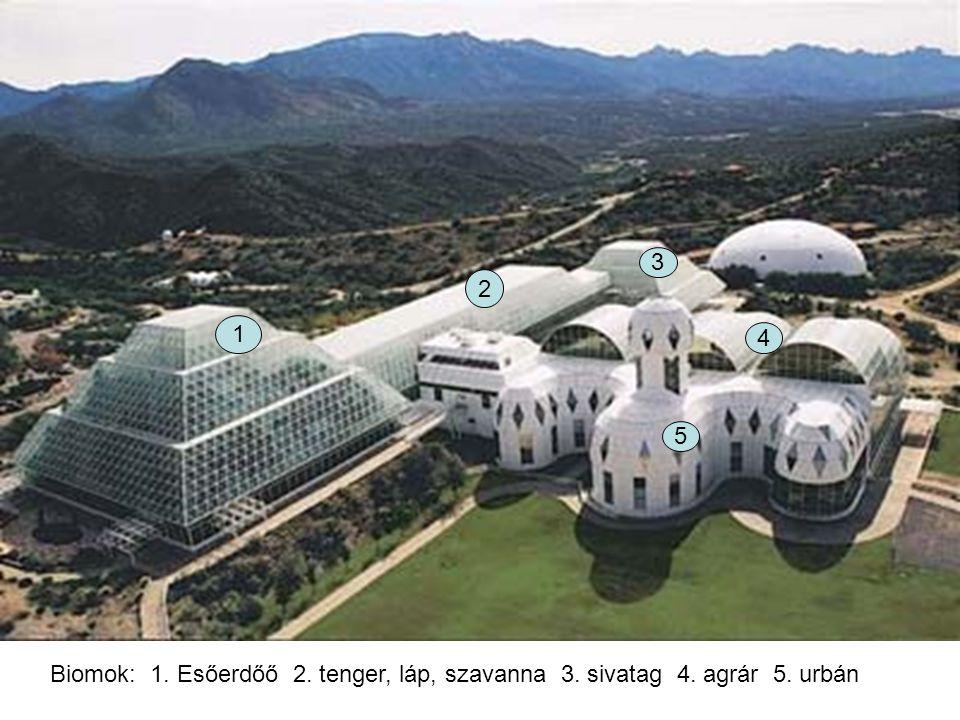Biomok: 1. Esőerdőő 2. tenger, láp, szavanna 3. sivatag 4. agrár 5. urbán 1 2 3 4 5