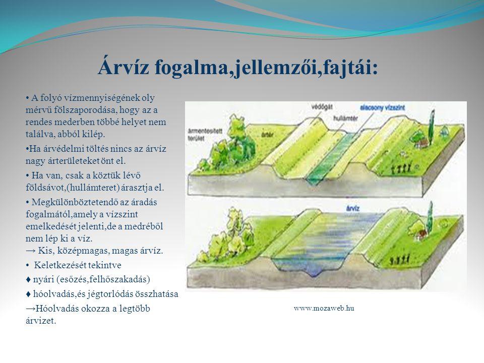 Árvíz fogalma,jellemzői,fajtái: A folyó vízmennyiségének oly mérvű fölszaporodása, hogy az a rendes mederben többé helyet nem találva, abból kilép.