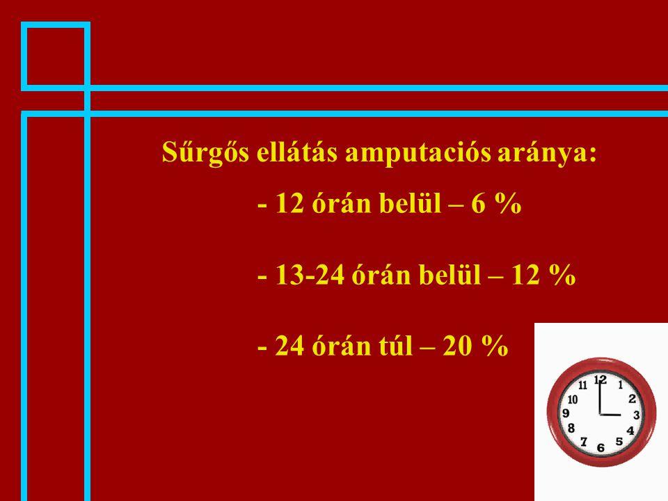 Sűrgős ellátás amputaciós aránya: - 12 órán belül – 6 % - 13-24 órán belül – 12 % - 24 órán túl – 20 % Meskó Éva dr.