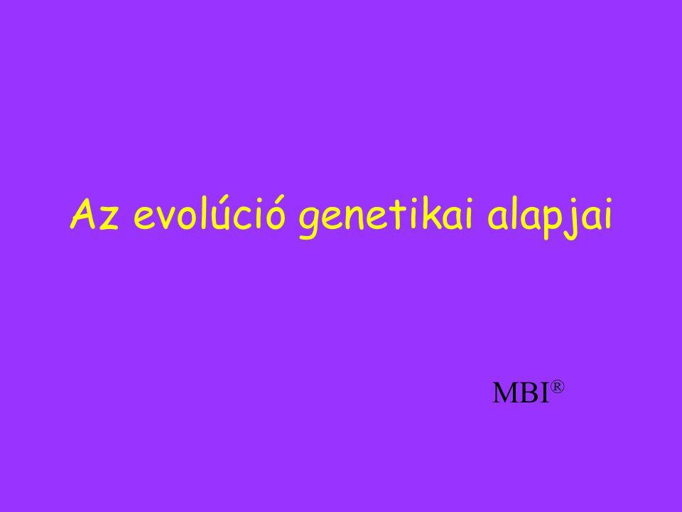 Az evolúció genetikai alapjai MBI ®