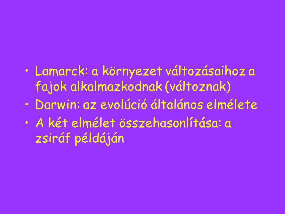 Lamarck: a környezet változásaihoz a fajok alkalmazkodnak (változnak) Darwin: az evolúció általános elmélete A két elmélet összehasonlítása: a zsiráf