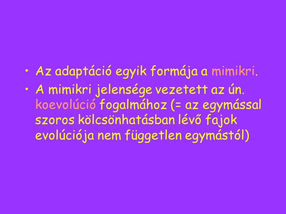 Az adaptáció egyik formája a mimikri. A mimikri jelensége vezetett az ún. koevolúció fogalmához (= az egymással szoros kölcsönhatásban lévő fajok evol