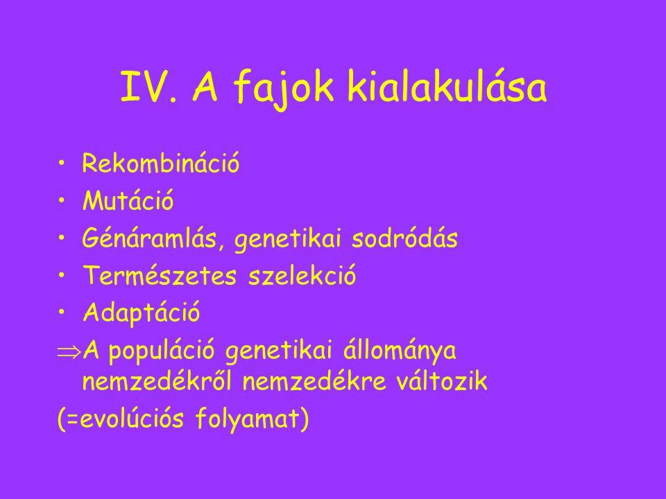 IV. A fajok kialakulása Rekombináció Mutáció Génáramlás, genetikai sodródás Természetes szelekció Adaptáció  A populáció genetikai állománya nemzedék