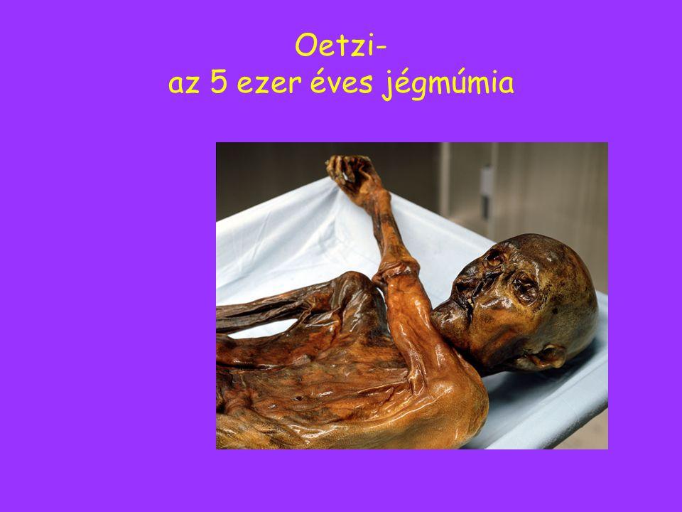 Oetzi- az 5 ezer éves jégmúmia
