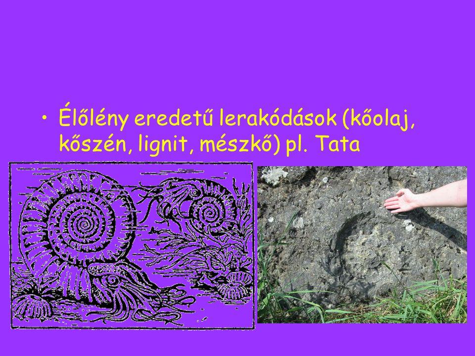 Élőlény eredetű lerakódások (kőolaj, kőszén, lignit, mészkő) pl. Tata