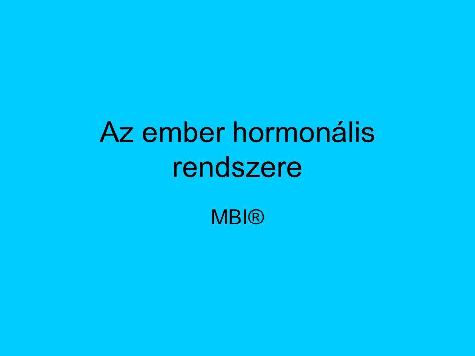 Az ember hormonális rendszere MBI®