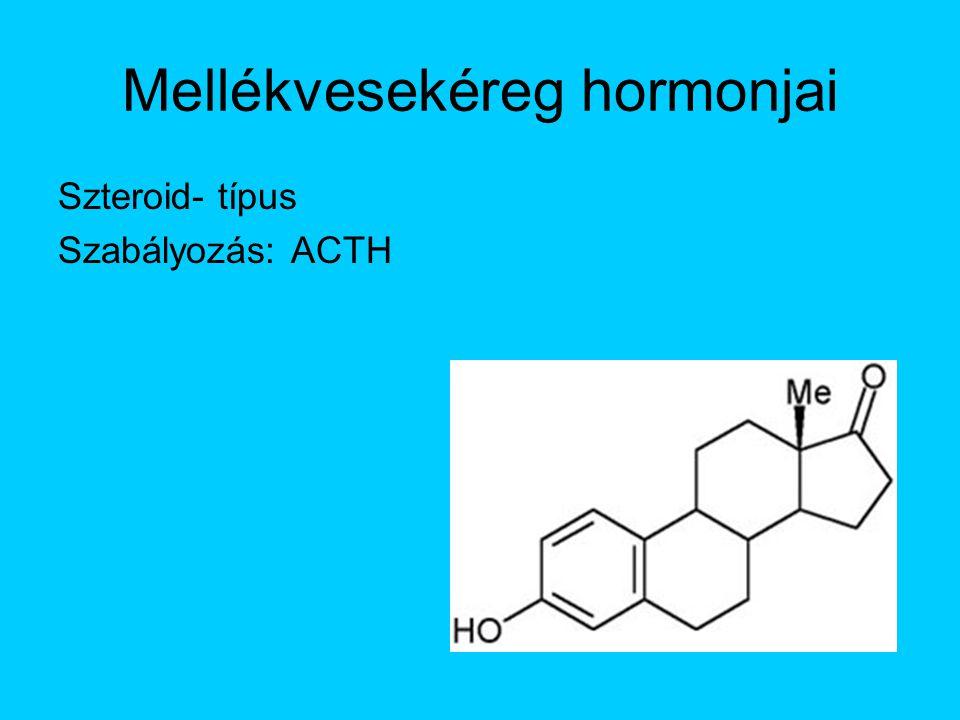 Mellékvesekéreg hormonjai Szteroid- típus Szabályozás: ACTH