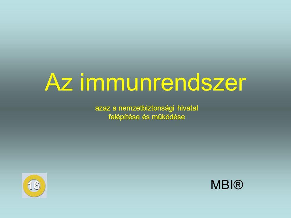 Az immunrendszer MBI® azaz a nemzetbiztonsági hivatal felépítése és működése